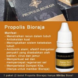 beda-propolis-bioraja-dari-propolis-biasa